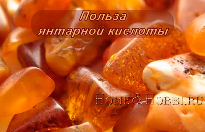 jantarnaja_kislota_dlja_organizma_cheloveka