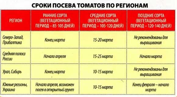 sroki-poseva-tomatov