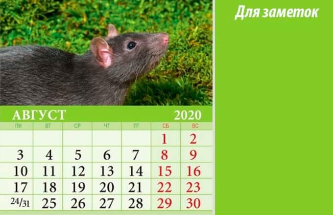 kalendar-dlja-zametok-na-avgust