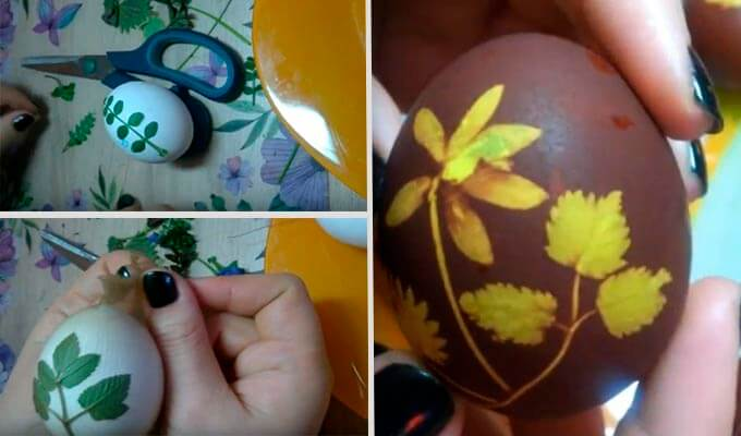 jajca-v-lukovoj-sheluhe-s-risunkom