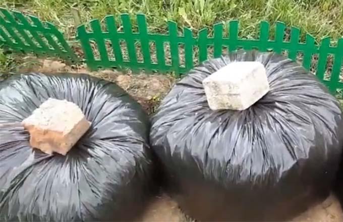 fermentirovannaja-trava