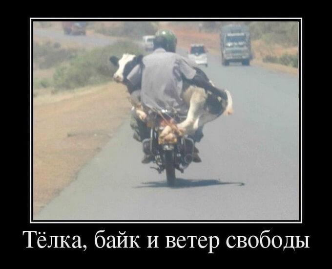 kartinka-ko-dnju-motociklista_4