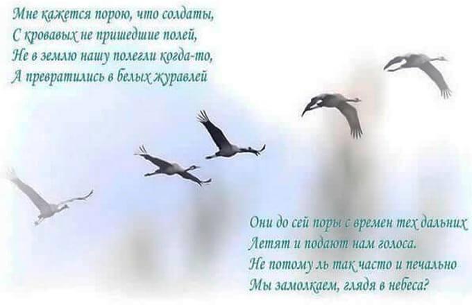 prazdnik-belyh- zhuravlej