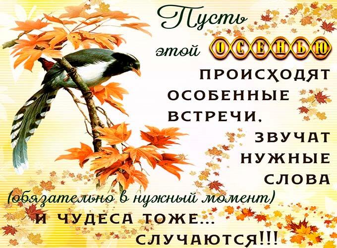 osennie-kartinki-s-pozhelanijami_5