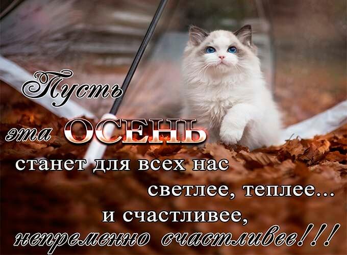 osennie-kartinki-s-pozhelanijami_8