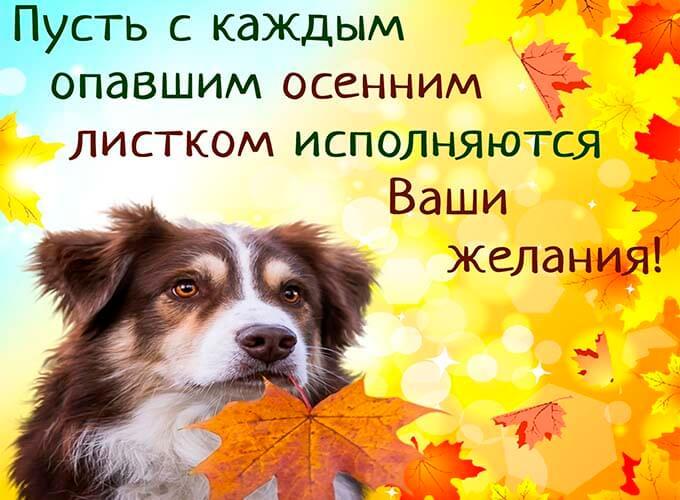osennie-kartinki-s-pozhelanijami_9