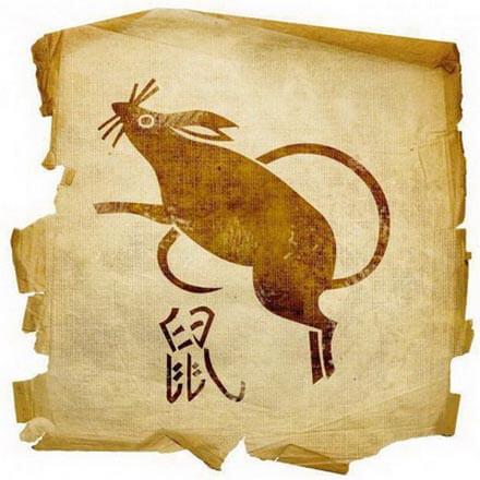 goroskop-dlja-krysy