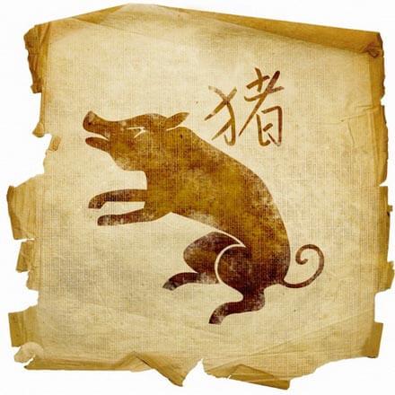 goroskop-dlja-svini