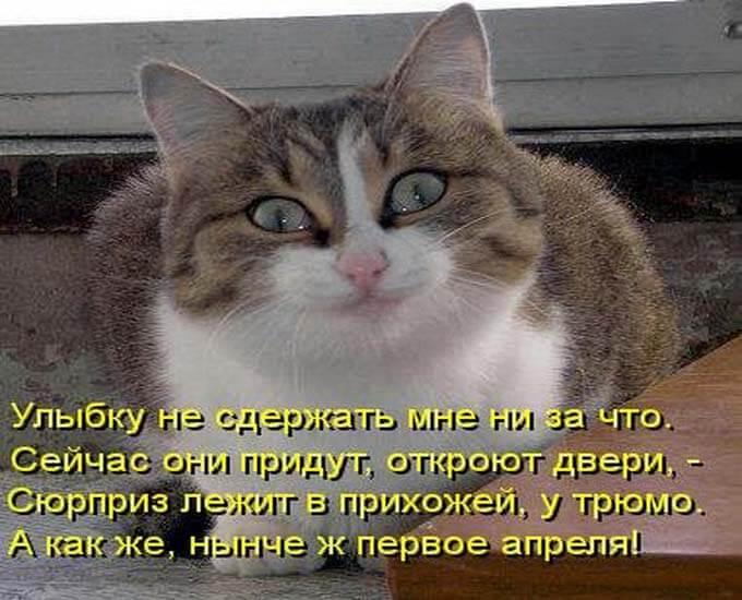 kartinki-na-den-smeha_5