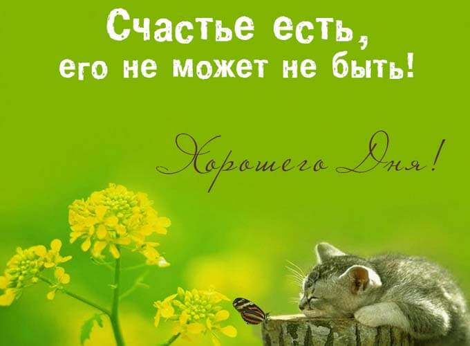 pozitivnye-kartinki-pro-schaste_6