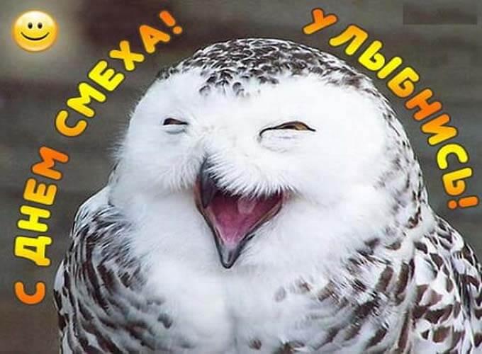 prikolnye-kartinki-s-1-aprelja_7