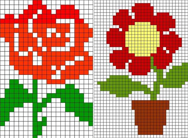 cvety-po-kletochkam